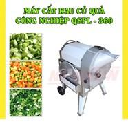 Máy cắt rau củ quả công nghiệp KN-QSPL 360